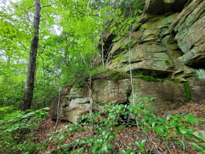 Paint Rock Creek Tract 45