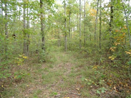 Clear Fork Acres Tract 58