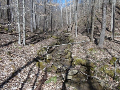 Wildcat Ridge Tract 3