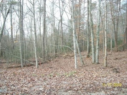 Grimsley Hills Tract 10