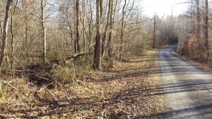 Chestnut Way Tract 6