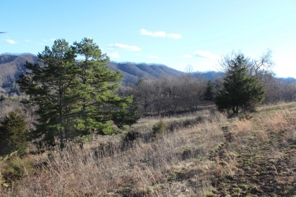 Copper Ridge Tract 4