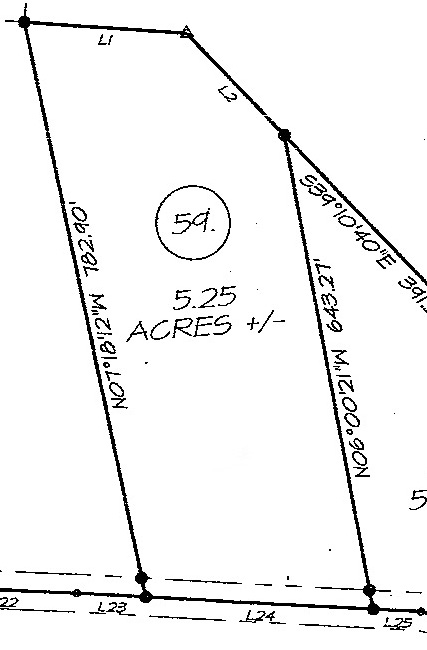 Clear Fork Acres Tract 59 Land Survey