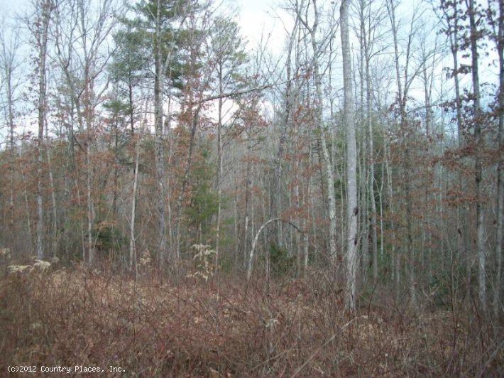 Four Creeks Tract 10
