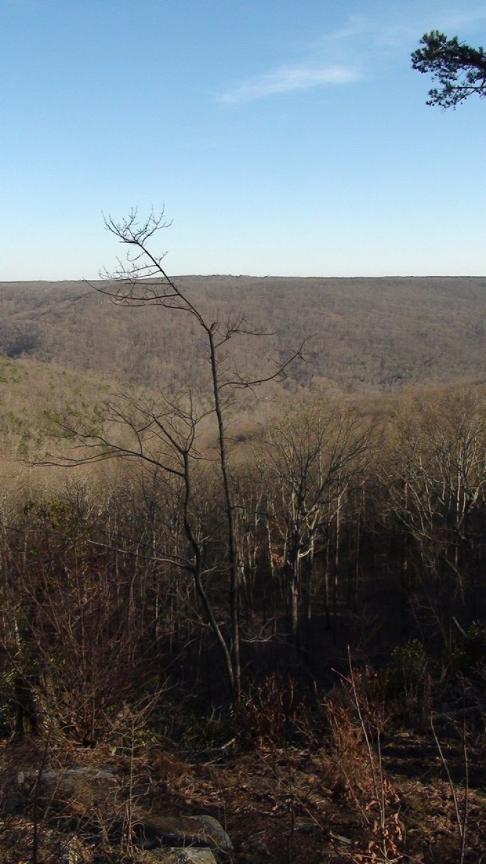 Land for building outside of Huntsville, Alabama with awesome views