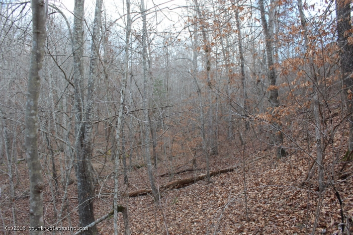 Goose Creek Estates Tract 45
