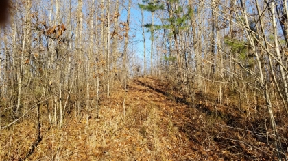 Wildcat Ridge - Phase 4 - Tract 6