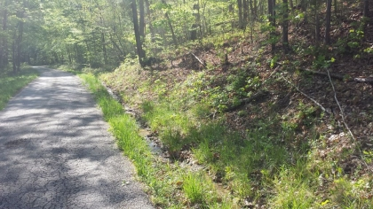 Wildcat Ridge - Phase II - Tract 9 - 5 acres