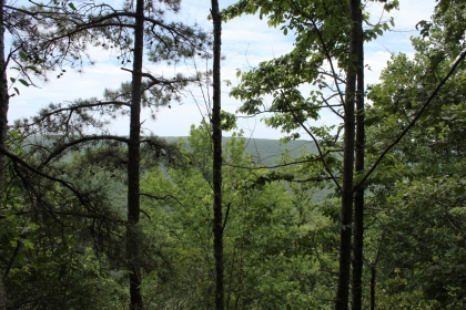 Land in Tennessee, Alabama land, Kentucky land and more! Buy land