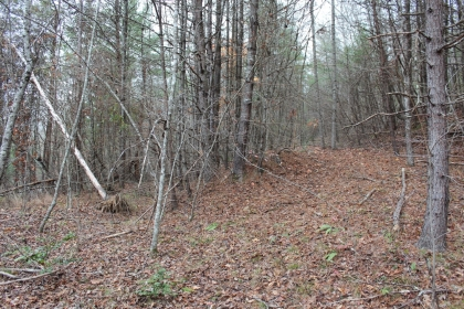 Burrville Rd. Tract 6