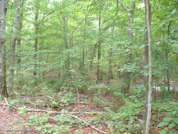 Keel Mountain 12.57 Acres