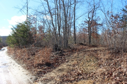 Goose Creek Estates Tract 7