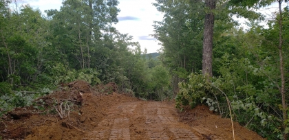 Goose Creek Estates Tract 29