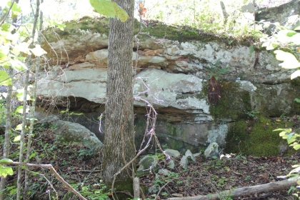 Paint Rock Creek Tract 7