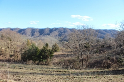 Land in Tennessee, Alabama land, Kentucky land and more! Buy